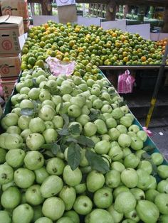#Pin By:Pinterest++ for iPad# Sprouts, Vietnam, Ipad, Apple, Fruit, Vegetables, Inspiration, Apple Fruit, Biblical Inspiration