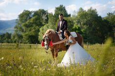 Sedinta foto dupa nunta pe cal :) Horses, Animals, Beast, Animales, Animaux, Animal, Animais, Horse