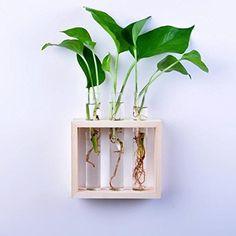 Gazechimp Kristall Glas Glasvase Reagenzglas mit Holzrahmen Holz Ständer / Rohrbürste , Wand Dekoration Für Blumen Pflanzen