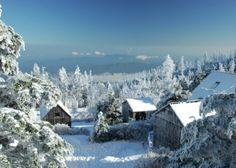 Mt. Leconte Winter Wonderland