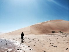 Forest View, Alexandria, Fossils, Dune, Wildlife, Southern, Hiking, Earth, Sea