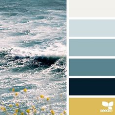 today's inspiration image for { color sea } is by @lbtoma ... thank you, Lina, for another incredible #SeedsColor image share!