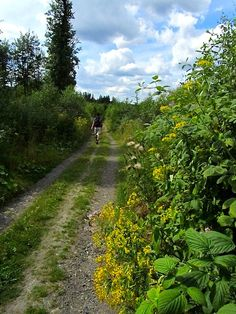 Learn something new from this German hiking trail.  http://easyhiker.co.uk/german-hiking-trails-the-drahthandelsweg/