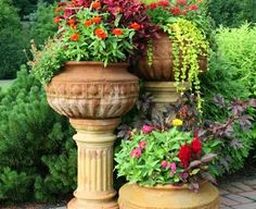 Cantigny's containers are chock full of color, texture and variety.