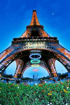 Eiffel Tower and spring flowers, Paris