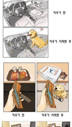 애완동물을 키우기 전 후 차이 만화 : 네이버 블로그 Animals And Pets, Cute Animals, Disney Sketches, Drawing Practice, Funny Moments, Manhwa, Funny Pictures, Kawaii, Cartoon