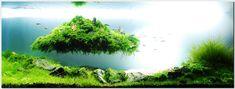 Floating island aquarium