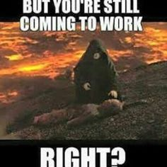 humor hilarious laughing so hard nailed it * humor laughing so hard nailed it ; humor hilarious laughing so hard nailed it ; funny quotes humor laughing so hard nailed it Star Wars Meme, Star Wars Film, Star Wars Witze, Funny Memes About Work, Work Memes, Work Humor, Funny Jokes, Funny Work, Lab Humor