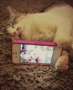 But first, let me take a selfie!