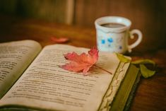 Book and Coffee Oprah Winfrey, Book And Coffee, Best Fiction Books, Les Satellites, Writing Conferences, Leaf Book, Reading Music, Reiki, Social Trends