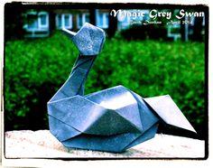 Magic Grey Swan - Barth Dunkan.