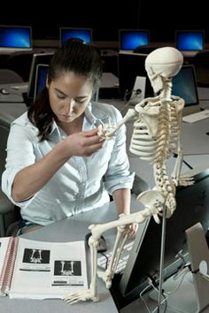 A nursing student uses the online human anatomy and physiology lab and lecture. The online environment can be enhanced with visual aides.