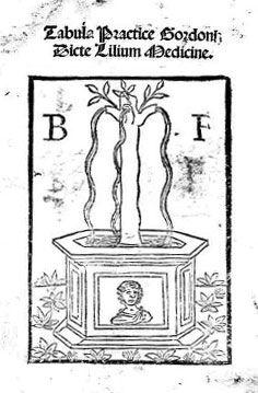 """""""Lilio de medicina"""", Bernardo de Gordonio"""