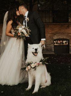 Wedding Picture Poses, Wedding Poses, Wedding Pictures, Dog Wedding, Forest Wedding, Dream Wedding, Wedding Tux, Wedding Ceremony Ideas, Wedding Photography Styles