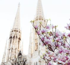 """""""Spring is the nature's way of saying, 'Let's Party!'""""  • • • • • #spring #colors #springbreak #art #agameoftones #bestoftheday #church #vienna #austria #like4like #follow4follow #photography #photographer #_allshots #l4l #f4f #followme #instalike #urban #architecture #explore #create #inspire  #trytogetbetter #1000thingsinvienna #wonderlustvienna #vintage #nature"""
