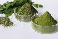 """MORINGA atenção à qualidade!!! A parte da planta com maior valor nutricional, são as folhas. O pó deve apresentar uma cor verde """"viva"""" com um cheiro intenso a verdura.  Compre qualidade e segurança."""