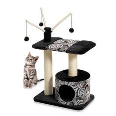 Cat Carnival Furniture - BedBathandBeyond.com