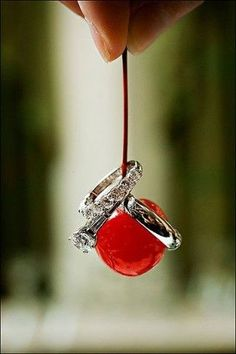 Great for a red wedding | fun ring shot! love the red @Daylyn Parks Jones Parks Jones Parks Jones