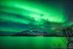 Aurora 28 | by Wayne Pinkston