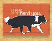Border Collie Dog Breed Magnet - Herd You