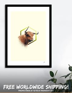 Discover «higland cattle», Numbered Edition Fine Art Print by Sonda - From $20 - Curioos