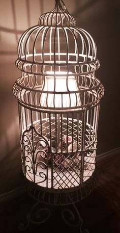 Old large bird cage, painted, distressed, with a lamp and flowers placed inside - great decoration