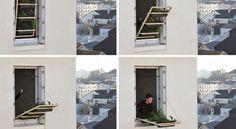 un jardín en la ventana