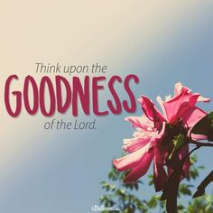 Think Upon the Goodness of the Lord!  iBelieve.com #inspirations #faith