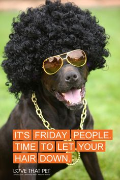It's time to let your hair down and enjoy the weekend! #TGIF #dog #lovethatpet