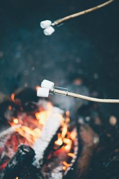 fire and forks! - urbans and indians - fotografie: Danique van Kesteren