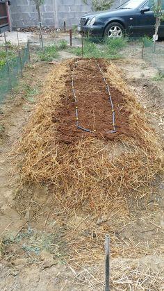Impianto irrigazione a goccia 2