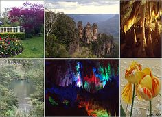 Visit to the Blue Mountains, NSW, Australia. Clockwise from top left: the gardens at our B&B; View of the Three Sisters from Echo Point; Inside Lucas Cave at the Jenolan Caves; Tulips from Everglades Gardens; Another shot of Lucas Cave; Outside Jenolan Caves.
