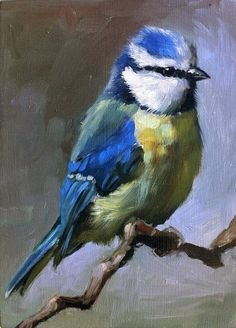 """""""little Blue Tit"""" by Shauna Finn."""