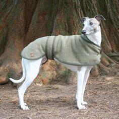 Tweed Whippet Coat   PetsPyjamas