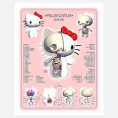 Kitty Anatomy now featured on Fab. [Art print, Jason Freeny, Moist Production]