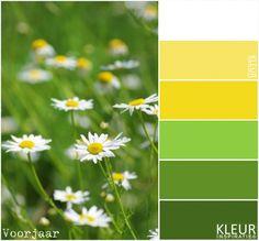 MADELIEFJES - Lente - frisse tinten geel en groen.