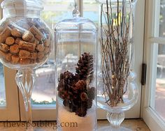Pine cones and salt