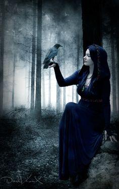 http://th00.deviantart.net/fs71/PRE/f/2012/243/7/4/dark_forest_2_by_darkvionx-d5d1lje.jpg
