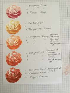 Picture Perfect Rose colour combinations