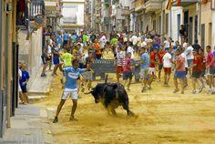 torodigital: Un toro de Felipe Bartolomé pone la salsa en la t...