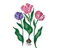 Small Tulips Wall Stencil