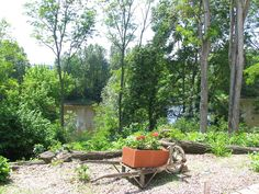 Loire Valley selfcatering accommodation :riverside barn conversion
