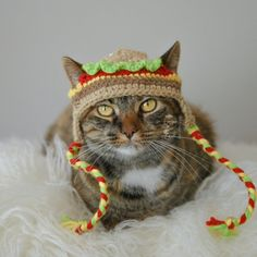 Cat Hat Hamburger Pet Hat Made to Order