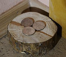 Feng Shui: Money Corner in Living Room (Wealth Corner) - Law of Attraction Blog