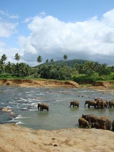 Simply Srilanka.. A sure place to explore
