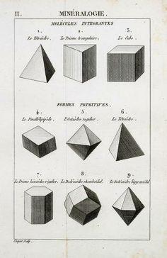 c.1, t.1 - Traité élémentaire d'histoire naturelle / - Biodiversity Heritage Library