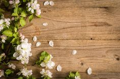 Spring post card background by The baking man on @creativemarket