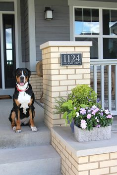 Beautiful front porch complete with adorable Greater Swiss Mountain Dog (Maud) and unique pewter metal coated address sign from Atlas Sign and Plaques.