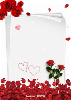 Romantic Background Of White Simple Rose Proposal On Valentines Day - romantic rose