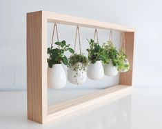 Indoor Herb Garden in Wooden Frame Wall Mount Planter Living Plant Wall Summer Decor Hanging Planter Botanical Wall Art Wall Mounted Planters, Wooden Planters, Hanging Planters, Hanging Terrarium, Hanging Plant Wall, Terrarium Plants, Wooden Garden, Hanging Succulents, Succulent Pots